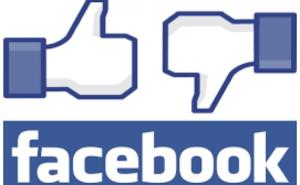 בעד ונגד מגנטים לחתונה דרך פייסבוק